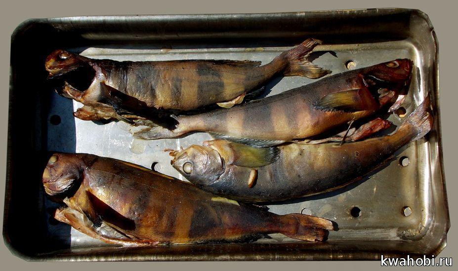 металлический лоток для копчения рыбы или сала в уличной печи коптильне