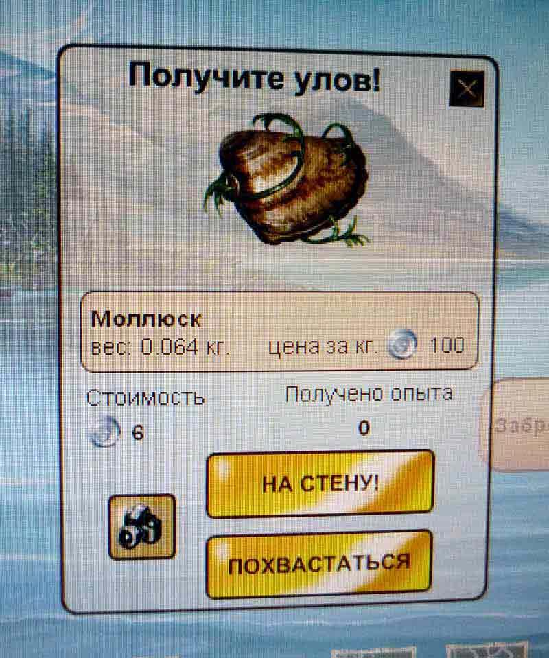 мусор_моллюск