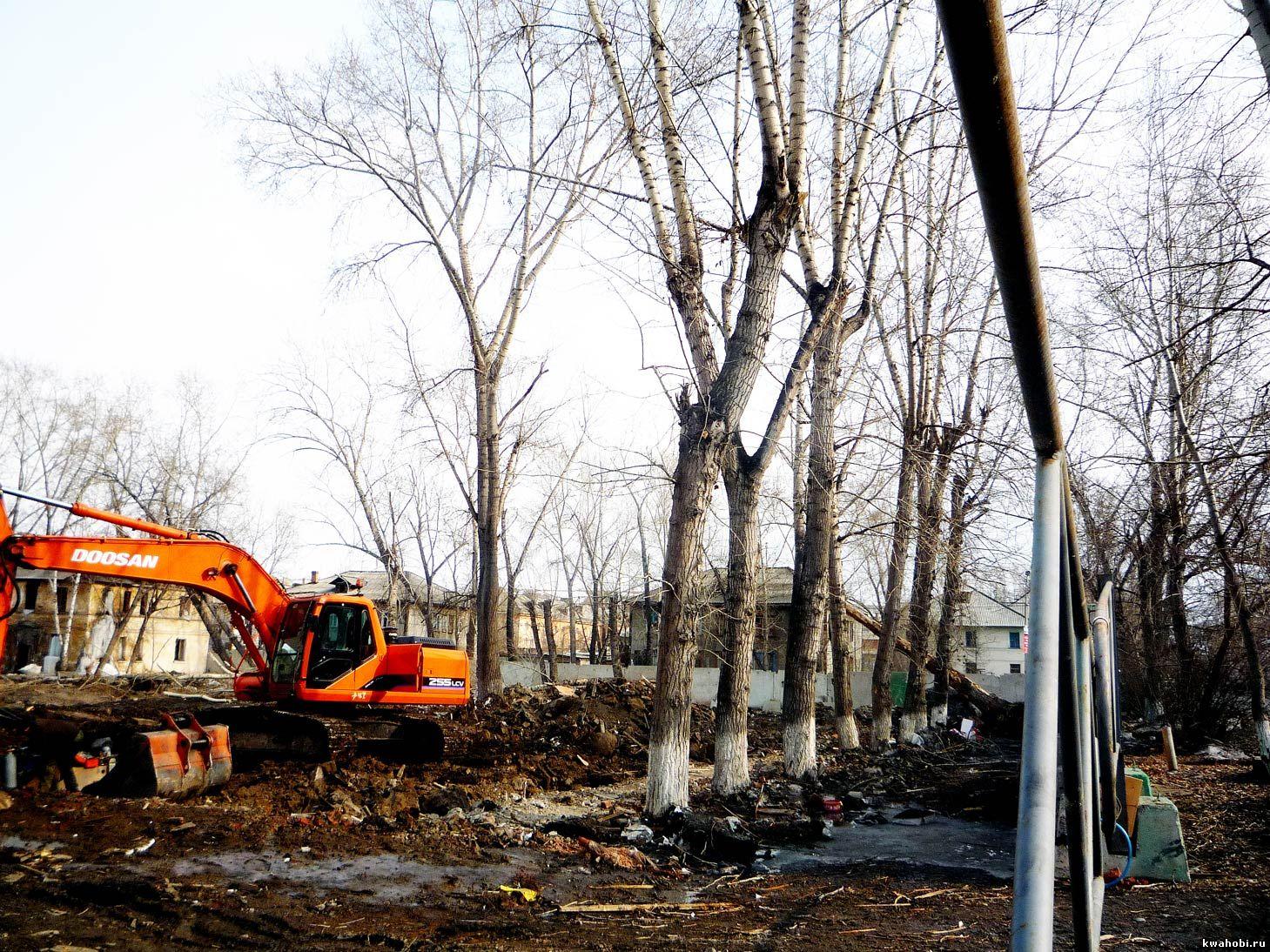 деревья будут выдернуты с корнем